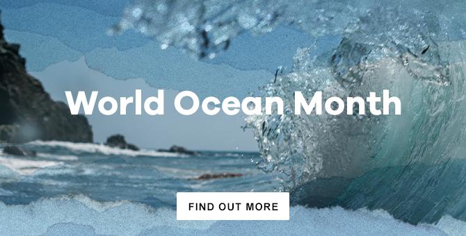 World Ocean Month
